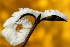Zimné ozdoby VI