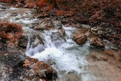 Potok v jeseni