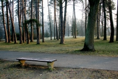 Ráno v parku