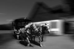 jan-galo_2_gastanove-kone